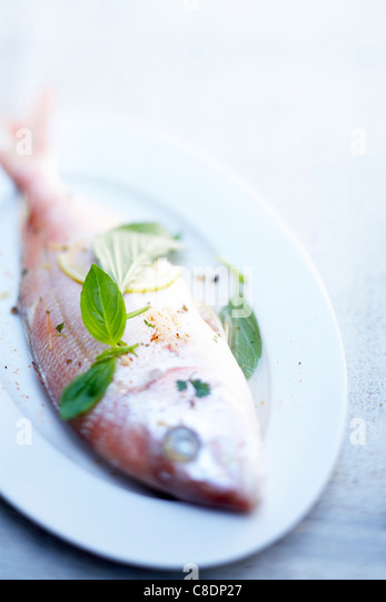 Steam-cooked fish - Stock Image