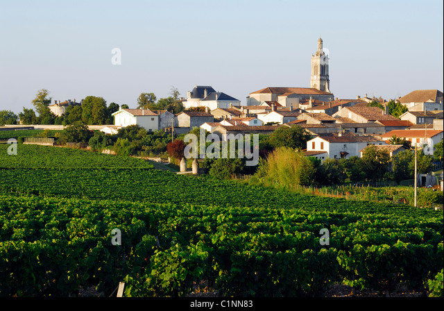 Saint-Estephe (Gironde) France  City new picture : France, Gironde, Saint Estephe, vineyards and Saint Estephe village in ...