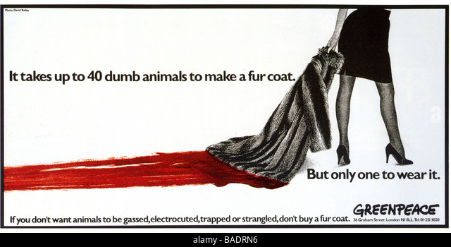 GREENPEACE advert from 1986 photograph by David Bailey - Stock Image