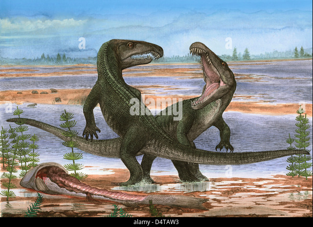 Paleozoic Era Stock Photos & Paleozoic Era Stock Images ...