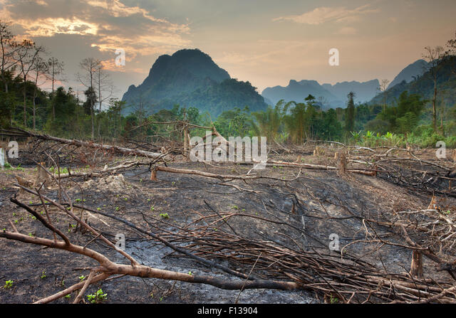 Slash and burn deforestation near Vang Vieng, Laos, March 2009. - Stock Image