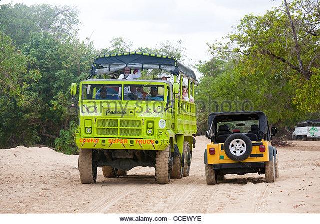 punta cana area,hispaniola,dominican republic,caribbean - Stock Image