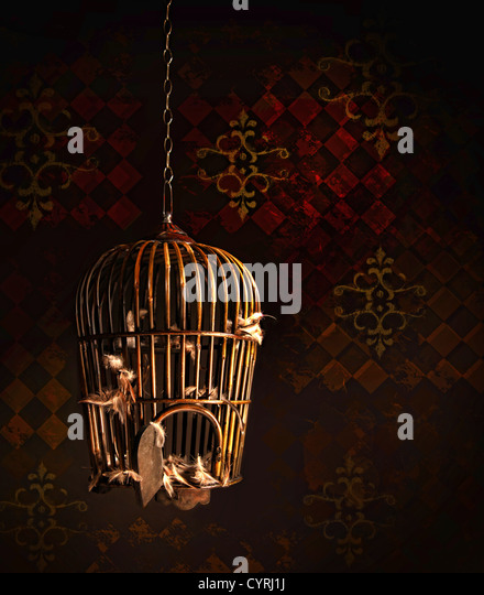 Old wooden bird cage with nothing but feathers left inside - Stock Image