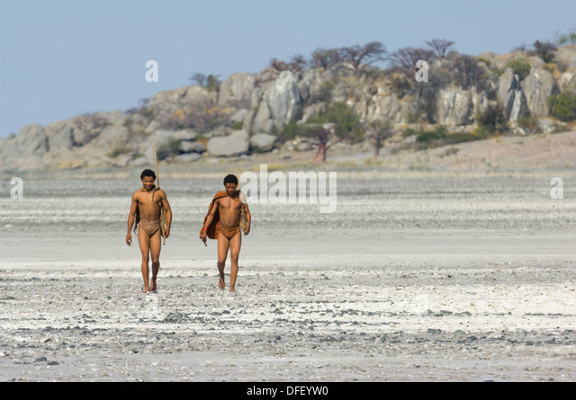San bushman trackers walking across the cracked pan away from the ancient granite outcrop of Kubu Island (Lekhubu), - Stock Image