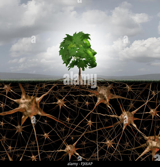 Neuron brain connection concept as a tree in a human head form with roots shaped as active growing neurons with - Stock Image