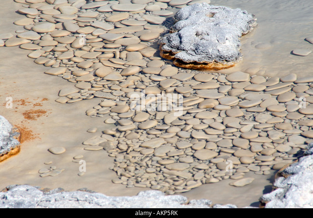 Arum Geyser, Upper Geyser Basin near Old Faithful, Yellowstone National Park - Stock Image