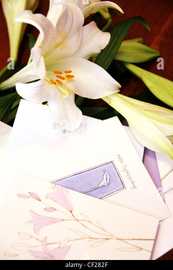 White lilies and with sympathy greetings cards - Stock Image