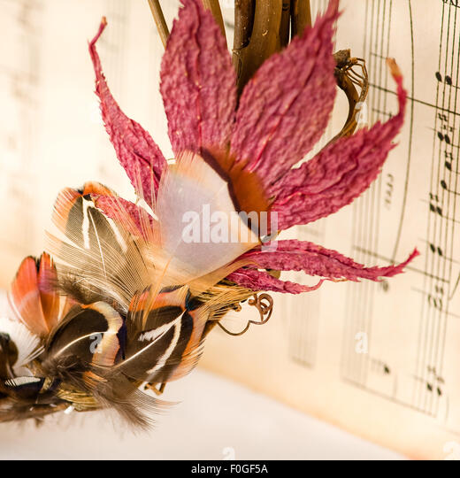 closeup of pheasant feathers and leaf wreath against vintage music paper - Stock-Bilder