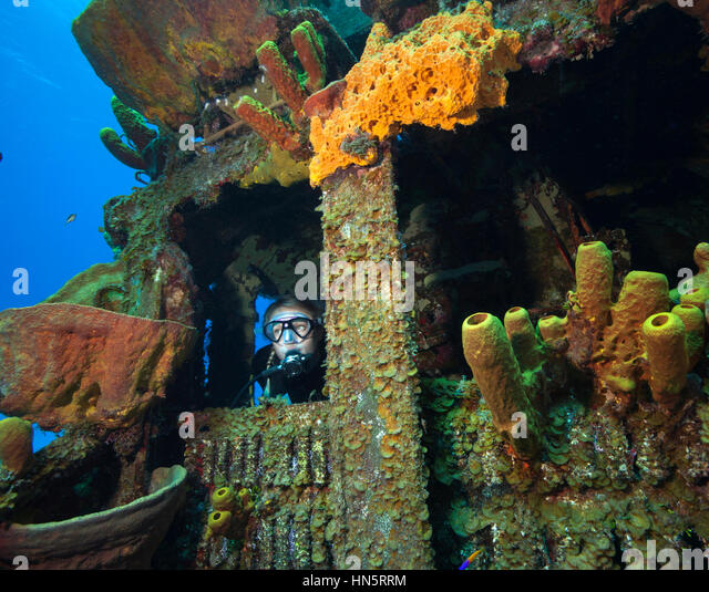 Scuba diver on the wreck of the MV Keith Tibbetts. - Stock-Bilder
