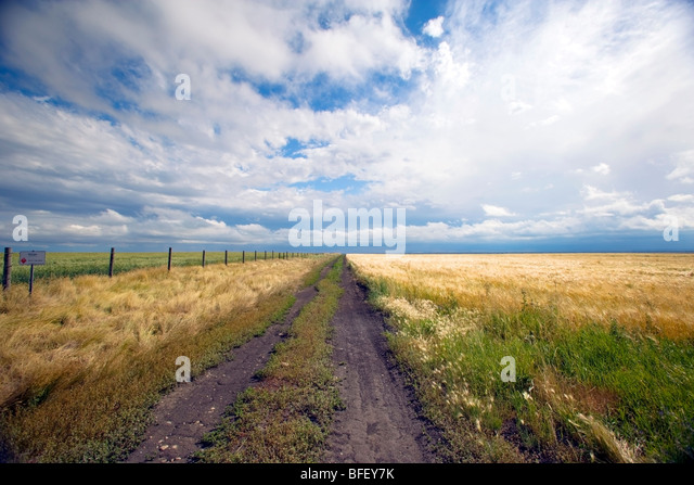 Storm breaking up over Ridge Road 221, Alberta, Canada, grain, Agriculture, weather - Stock Image