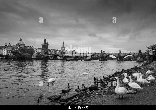Prague Charles Bridge - Stock-Bilder