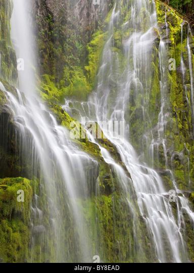 Close up of Proxy Falls. Three Sisters Wilderness, Oregon - Stock Image