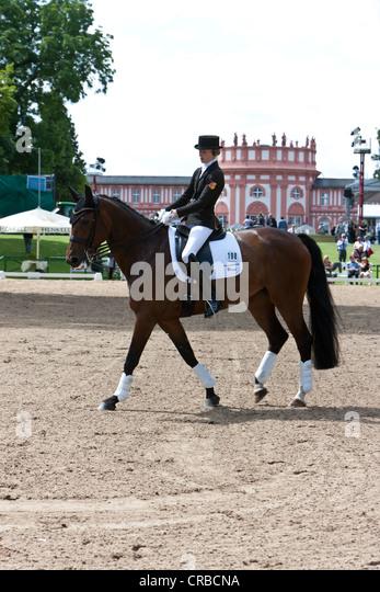 Dressage, International Pentecostal show jumping and dressage competition, Schlosspark Biebrich palace gardens, - Stock Image