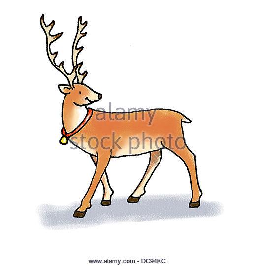 reindeer - Stock-Bilder