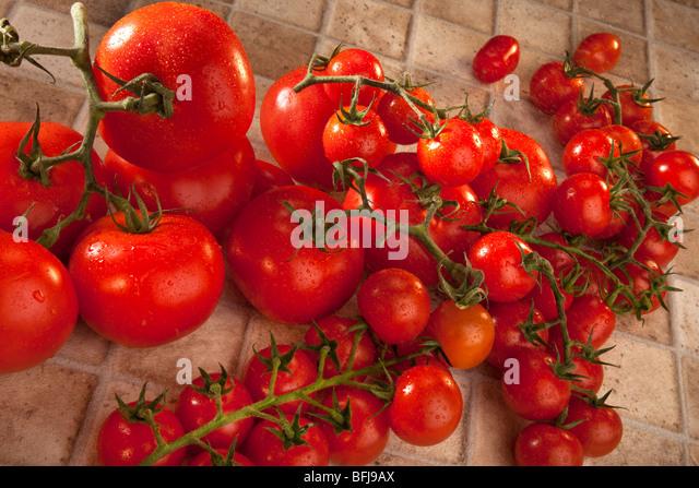 Fresh Tomato - Stock Image