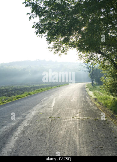 a rural road in spring in bright morning light - Stock Image
