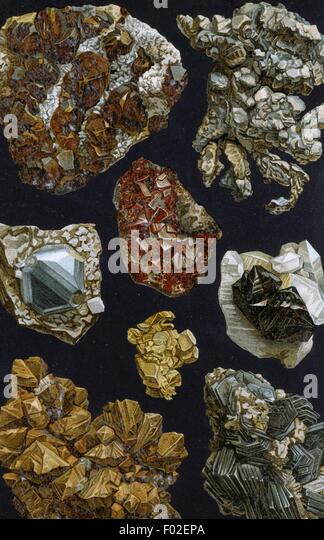 Table with crystallized minerals, 19th century, drawing. - Stock Image