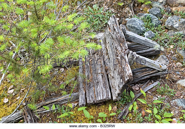 Rotting wooden wheel barrow from the 1800s or 1900s - Stock-Bilder