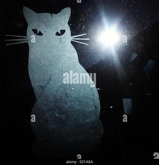 The sun reflects in a car window decorated with a sticker of a cat in Colonia Roma, Mexico City, Mexico - Stock Image