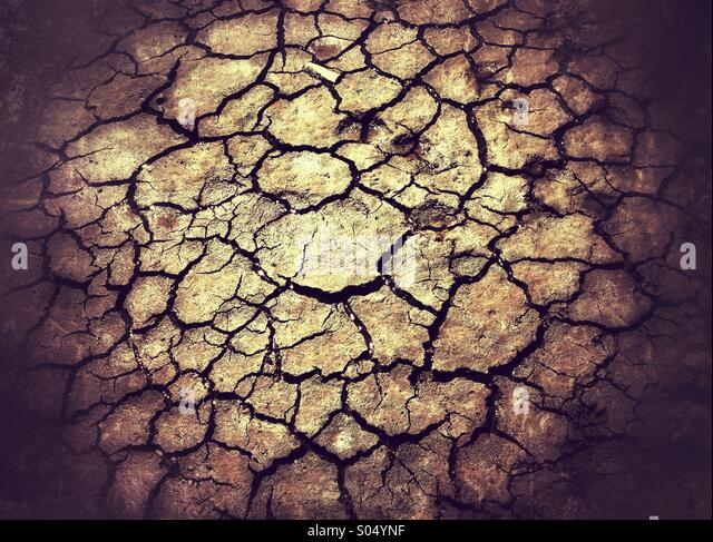 Cracked dried mud abstract - Stock-Bilder