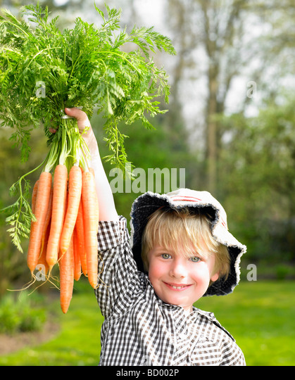 Boy holding a carrot bunch - Stock Image