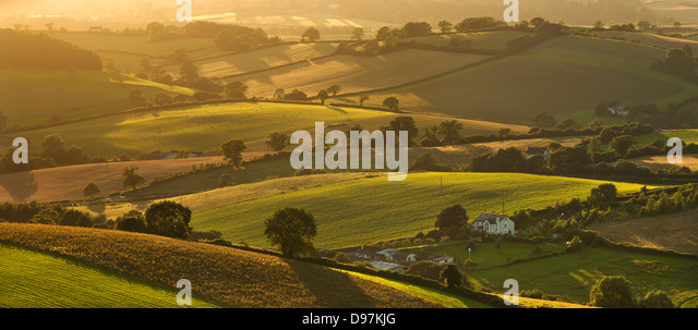 Rolling countryside in summer time, Nr Crediton, Devon, England. Summer (July) 2012. - Stock Image