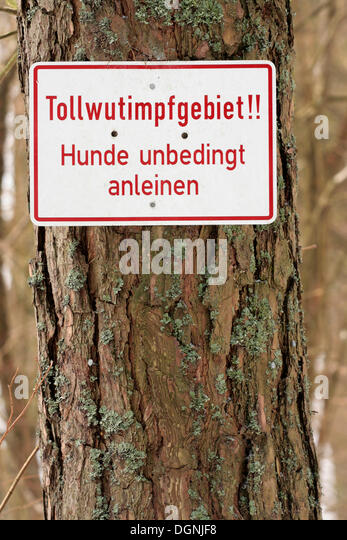 Warning sign, Tollwutimpfgebiet!, German for rabies area, dogs must remain leashed - Stock Image