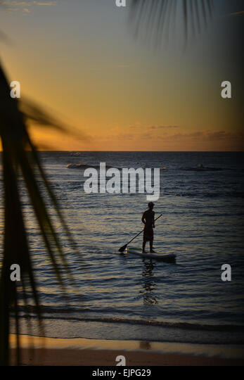 Silhouette of a man on a paddle board during a stunning sunset at Jobos beach. Isabela, Puerto Rico.  Caribbean - Stock Image