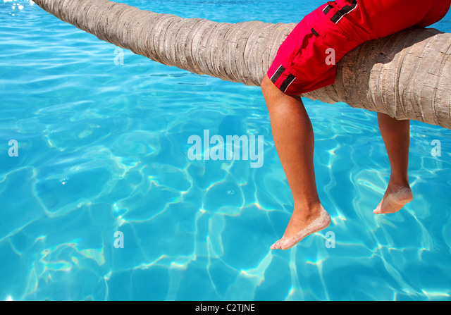 Caribbean inclined palm tree beach trunk sitting tourist legs - Stock Image