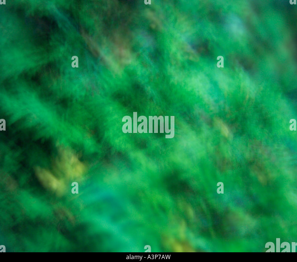 Abstract in Green - Stock Image