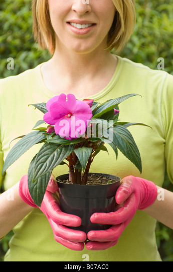 Woman holding a flowering plant - Stock Image