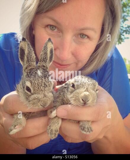 A woman holds two baby rabbits. - Stock Image