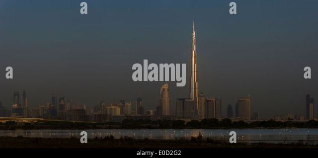 Greater Flamingos feeding and the sun catching the Burj Khalifa, Dubai, United Arab Emirates (Phoenicopterus roseus) - Stock-Bilder