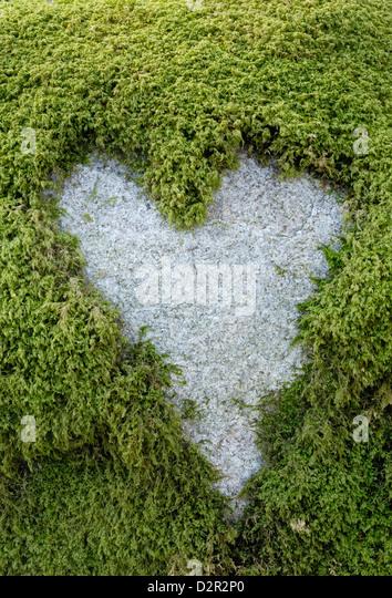 Love Heart shape in moss on granite bolder - Stock Image