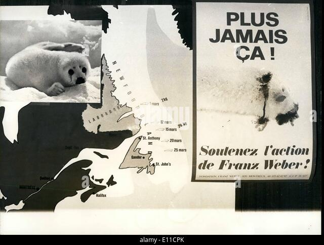 Feb. 02, 1977 - Back from Canada the Swiss Franz Weber these days days informed about the seal killing, that will - Stock Image