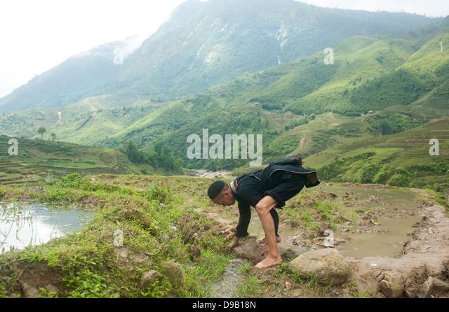 Sapa , North  Vietnam - Farmer in the mud - Stock-Bilder