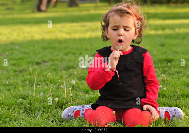 Girl playing in the park, picking flowers and dandelions - Stock Image