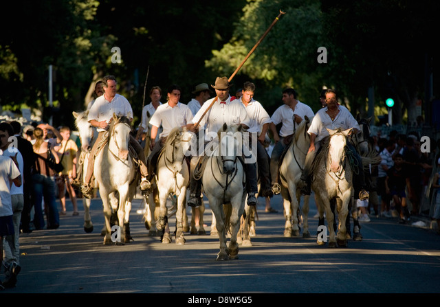 A group of ten riders on white Camargue horses riding down the street in after a bullfight, Arles, France - Stock Image