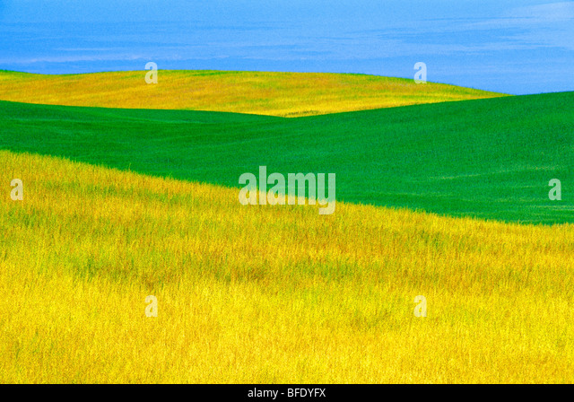 Prairie landscape, Parkbeg, Saskatchewan, Canada - Stock Image