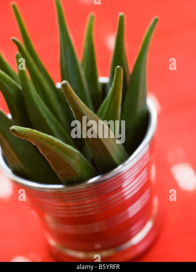 Pot filled with Okra - Stock Image