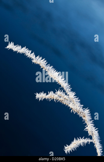Winter abstract - Stock-Bilder
