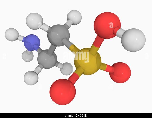 Molecule Dog Toy