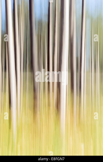 Abstract shot of flagpoles - Stock Image