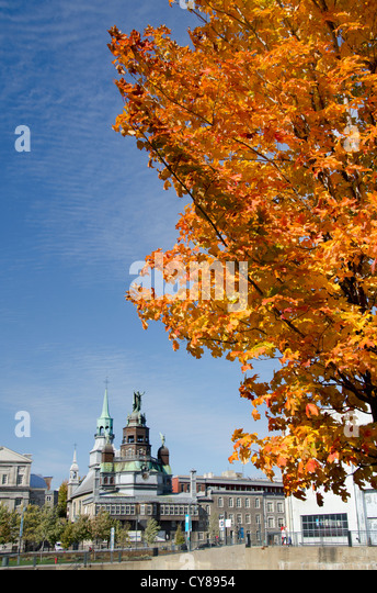 Canada, Quebec, Montreal. Fall foliage view of historic Marguerite Bourgeoys Museum & 300-year old chapel. - Stock Image