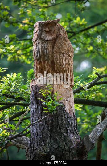 Oak sculpture stock photos images