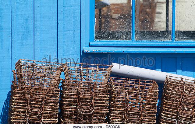 oyster-farming-le-dolron-charente-mariti