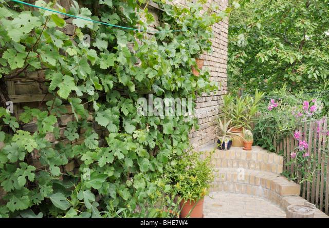 Biblical garden stock photos biblical garden stock for Garden design bible