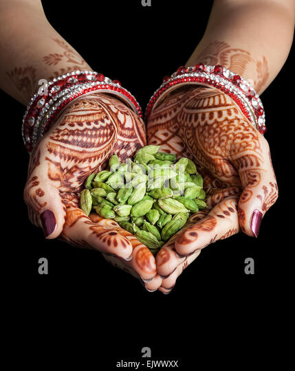 Woman hands with henna holding green cardamom spices isolated on black background with clipping path - Stock Image