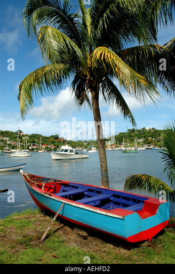 GRENADA yacht club St Georges Caribbean red and blue fishing boat under palm tree southern caribbean - Stock Image