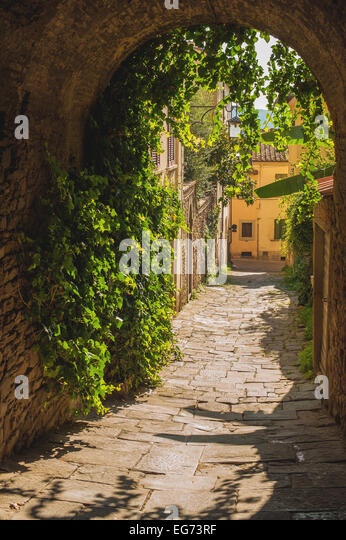 Old streets of greenery a medieval Tuscan town. - Stock-Bilder